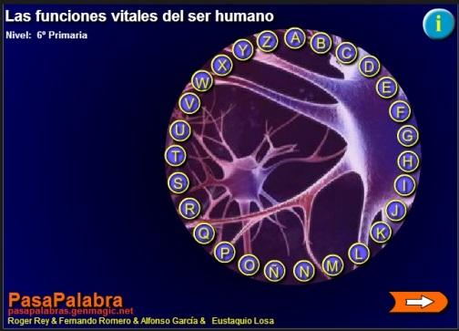 funciones cuerpo humano